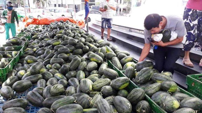 Kết quả hình ảnh cho giải cứu hoa quả